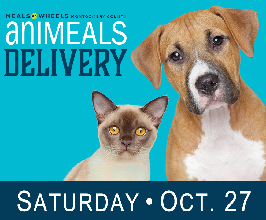 Saturday aniMeals delivery - October 2018