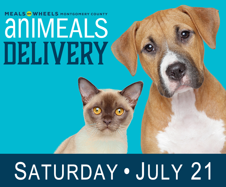 Saturday aniMeals delivery