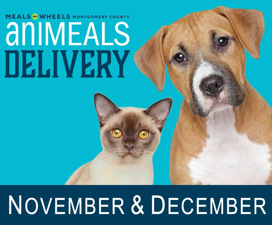 aniMeals Delivery - Holidays 2018